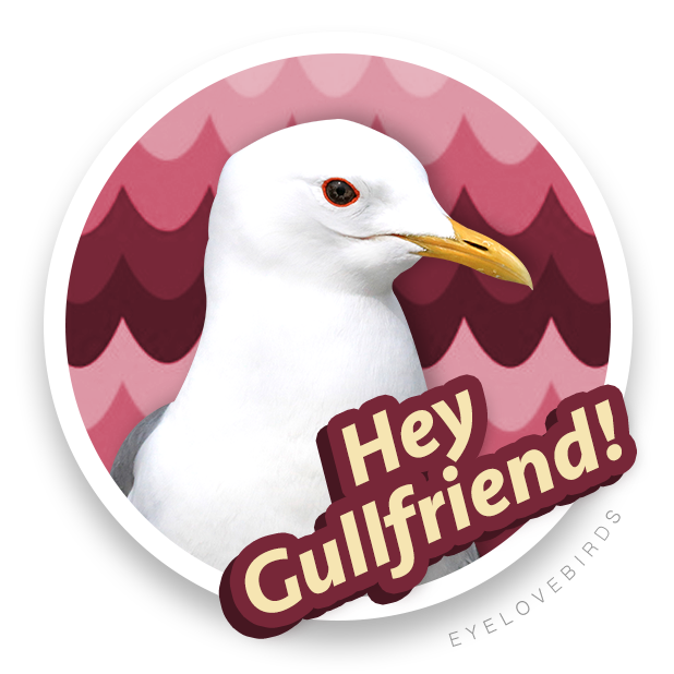 EyeLoveBirds: Bird Checklists messages sticker-1