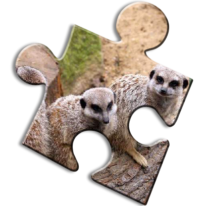 Animal Puzzle Games - Fun Jigsaw Puzzles messages sticker-7