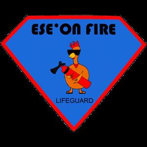 Bureau des Étudiants - ESEO messages sticker-7